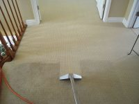 carpet cleaners penarth
