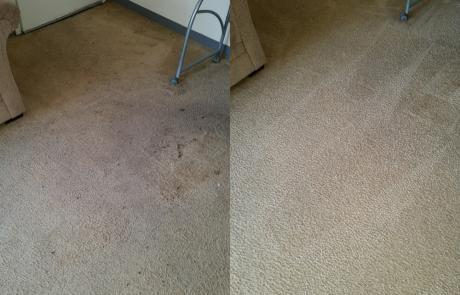 carpet cleaning in Cardiff carpets