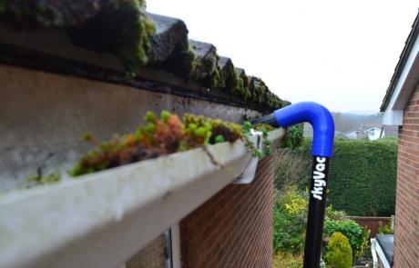guter vac removing moss