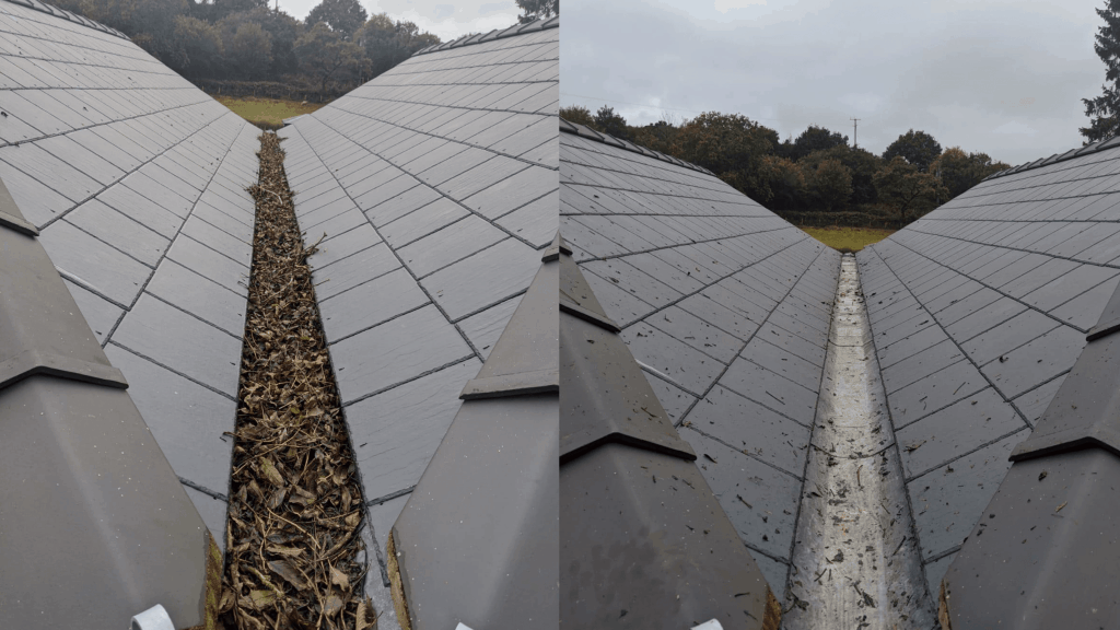 before after roof clean